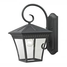 Thomas 8411EW/65 - Ridgewood 1 Light Outdoor Wall Sconce In Matte T
