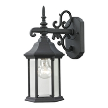 Thomas 8611EW/65 - Spring Lake 1 Light Outdoor Wall Sconce In Matte