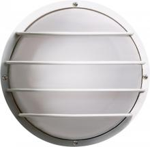 Nuvo SF77/892 - 2 Light Poly Round Cage Wall Flush